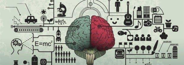 brain 620x326