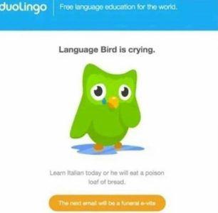 duolingo ux psychology